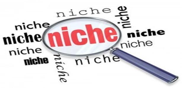2 Tips voor een succesvolle niche website